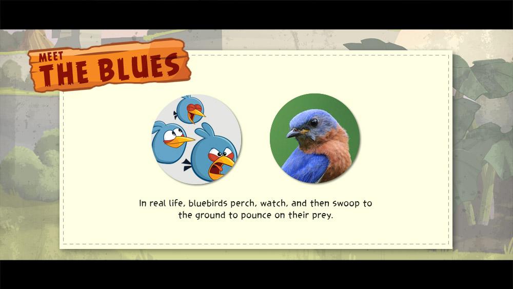 meet the blue trivia loop slide