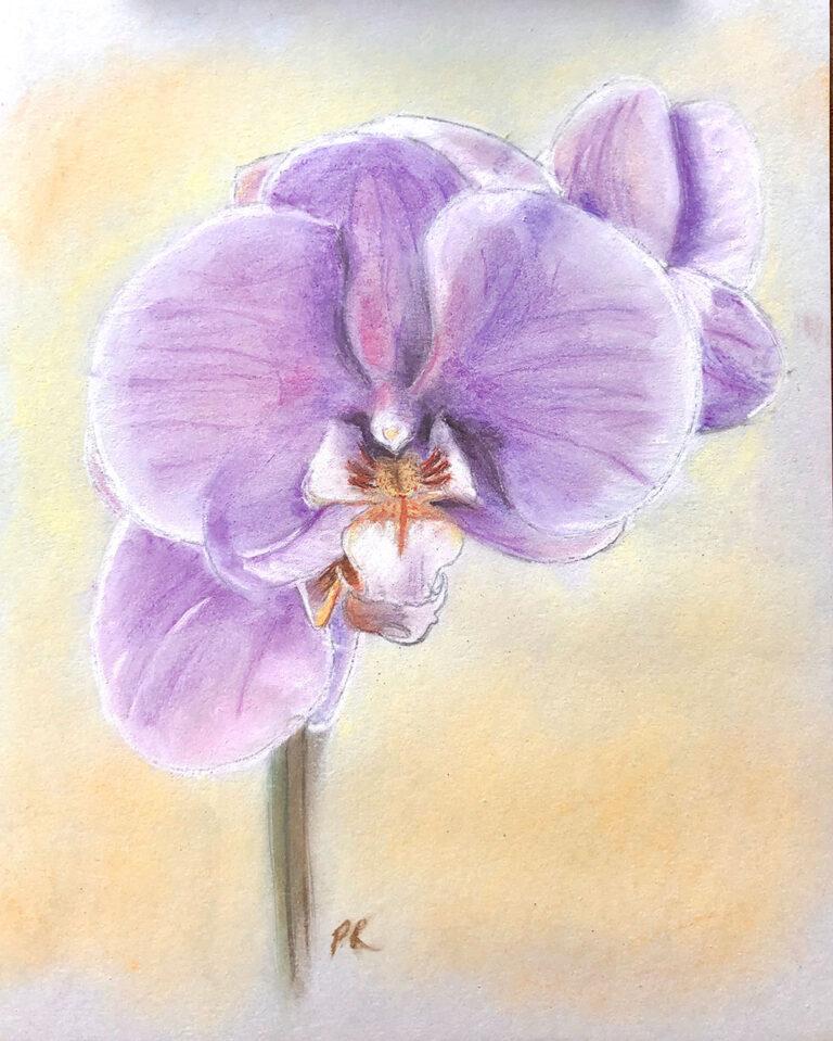 purple_orchid_sm
