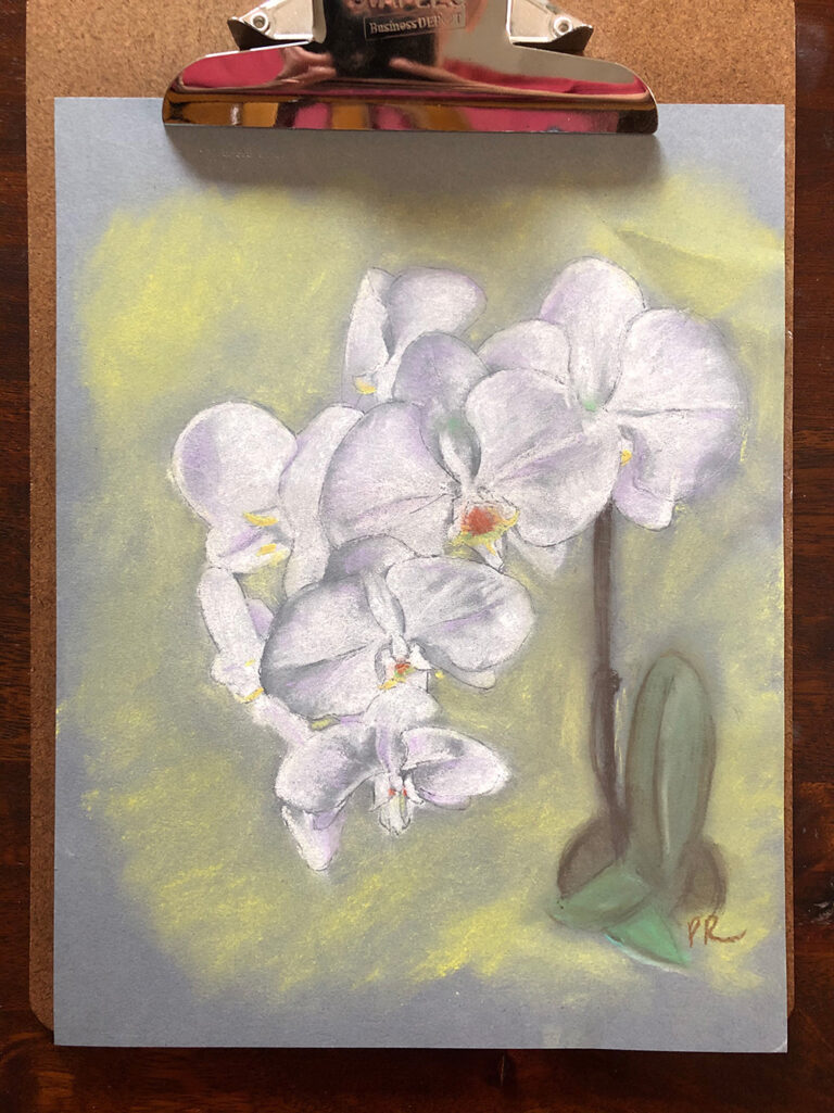 white_orchid_02_sm